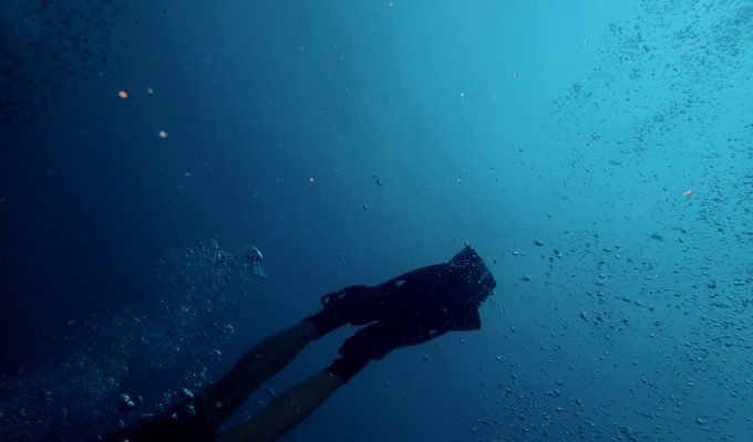 Diving in the Sea | MilesObrien.com