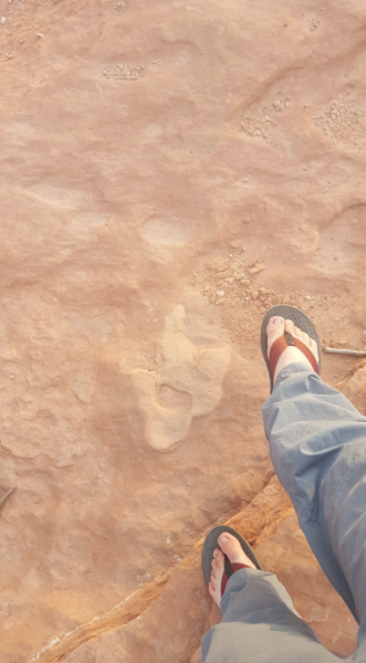 Robert Gay foot next to fossilized dinosaur footprint | Miles O'Brien Productions